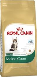 Royal Canin | Kitten Maine Coon
