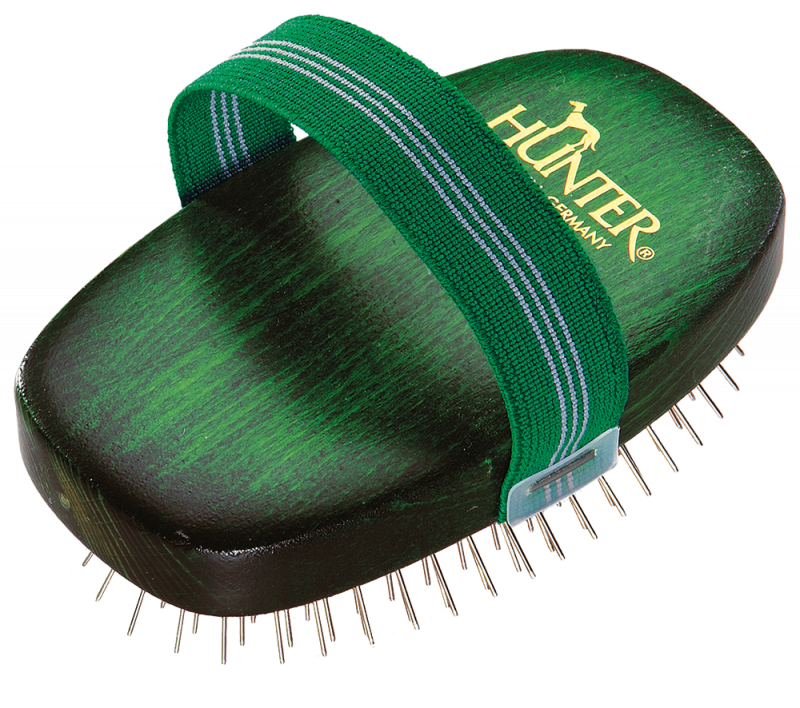 Hunter   Hundeschweifbürste oval Buche grün