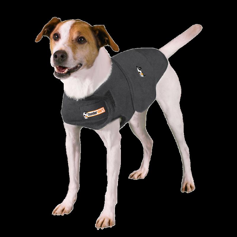 Thundershirt | Hund in Grau