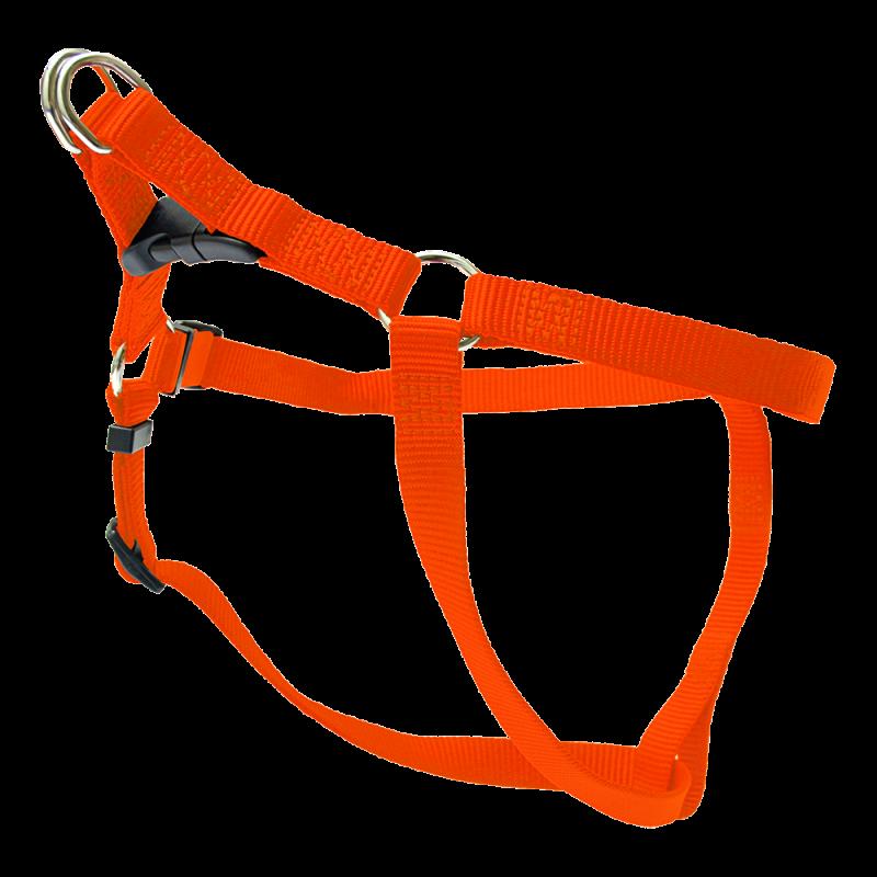 Wolters   Geschirr Basic One-Touch in Orange