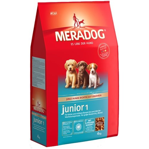 Mera Dog | Junior 1