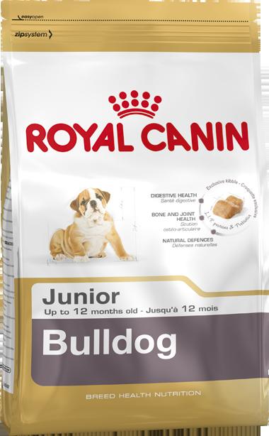 Royal Canin | Bulldog Junior