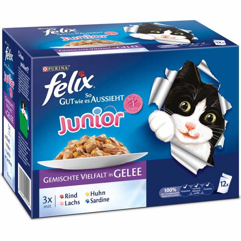 Felix | So gut wie es aussieht Junior 12 x 100g