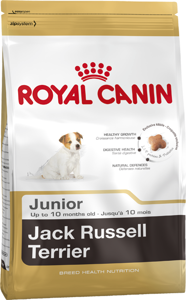 Royal Canin | Jack Russell Junior