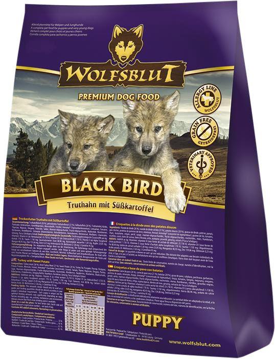 Wolfsblut | Black Bird Puppy