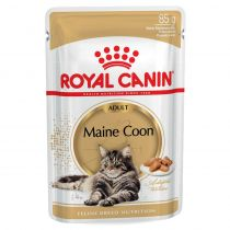 Royal Canin | Maine Coon Adult