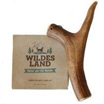 Wildes Land | Natur Hirschgeweih Ganz