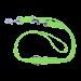 Wolters | Führleine Basic Standard in Lime | Nylon,grün 1