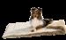 Hunter   Tierdecke Astana in Braun   Stoff,braun,beige 5