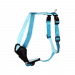 Wolters | Geschirr Professional Comfort in Aqua/Azur | Nylon,türkis,blau 1