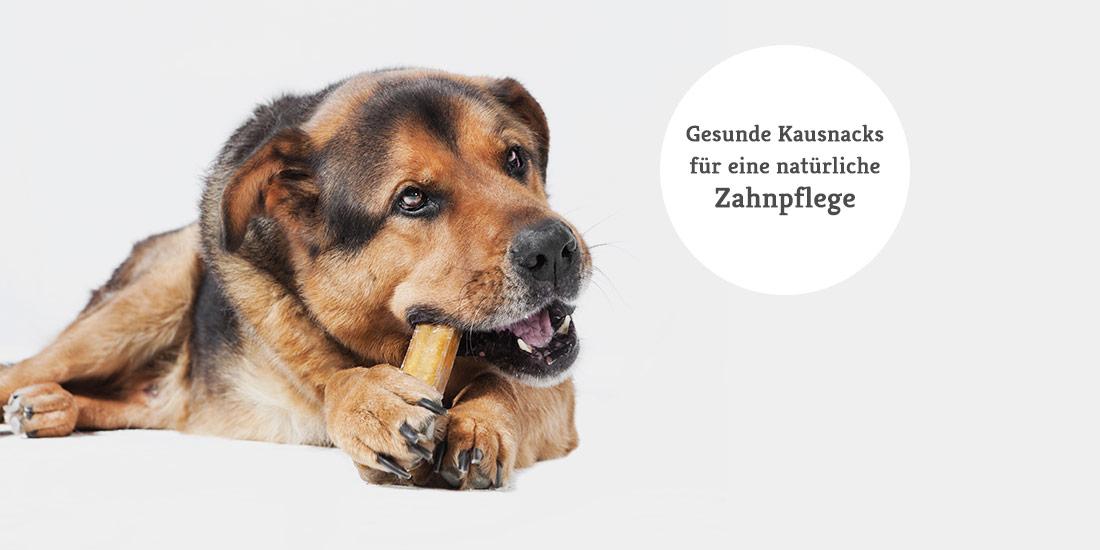 Natürliche Kausnacks für Hunde