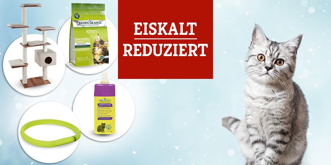 Winter Wonder Sale für Katzen