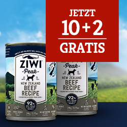 Ziwi Nassfutter Aktion Hund - 10+2