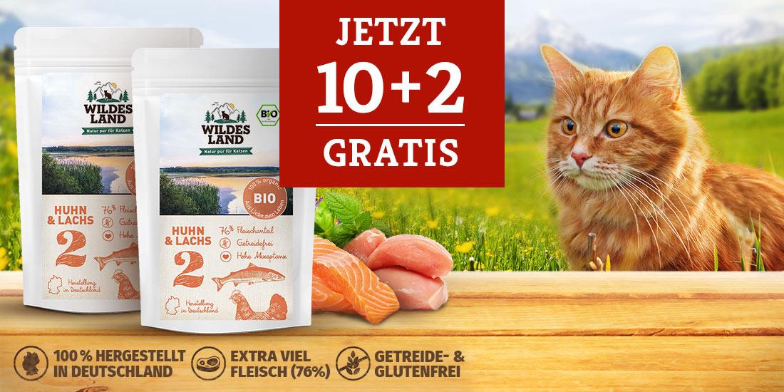 Wildes Land Katze BIO Nassfutter 10+2 Aktion
