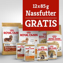Royal Canin Mischfütterung Trockenfutter + Nassfutter gratis
