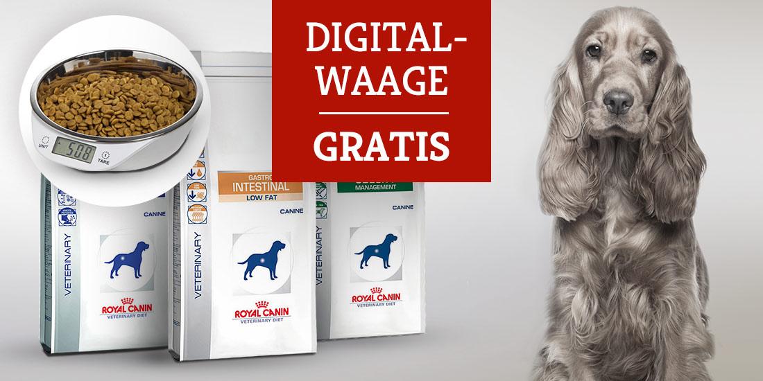 Großgebinde Royal Canin Veterinary Diet kaufen + Digitalwaage gratis erhalten