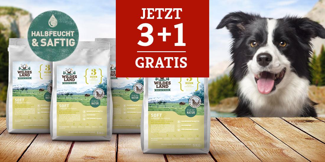 Wildes Land Hund - 3+1 Softfutteraktion
