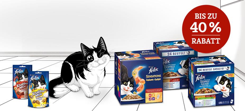 Für Katzen wie Felix