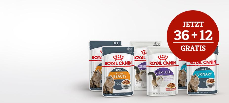 Royal Canin Nassfutteraktion auf ausgewählte Sorten: