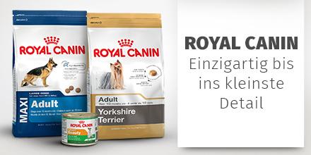 201808-Brand-Royal Canin-Hund