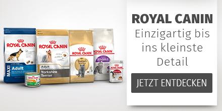 Royal Canin_Imagebanner