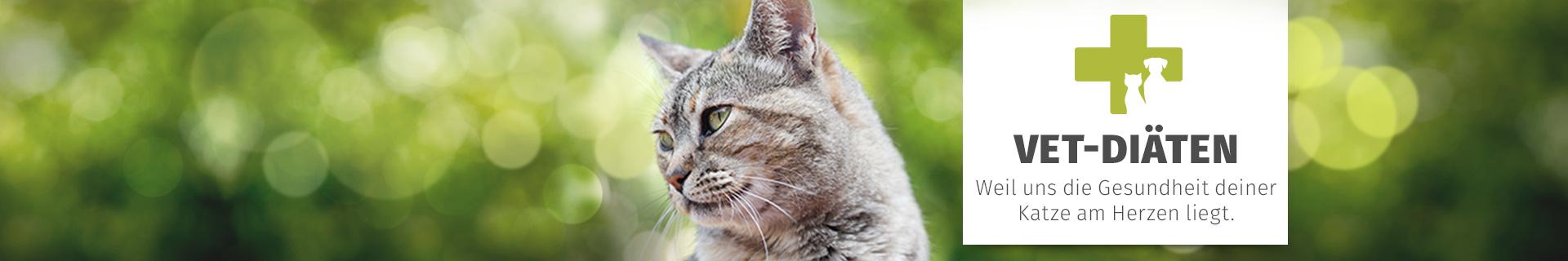 Hochwertiges Tierarzt Diatfutter Fur Katzen Gesundes