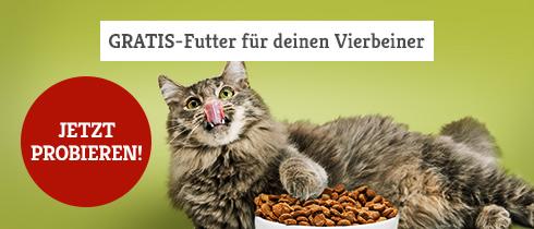 Probierwelt für Katzen