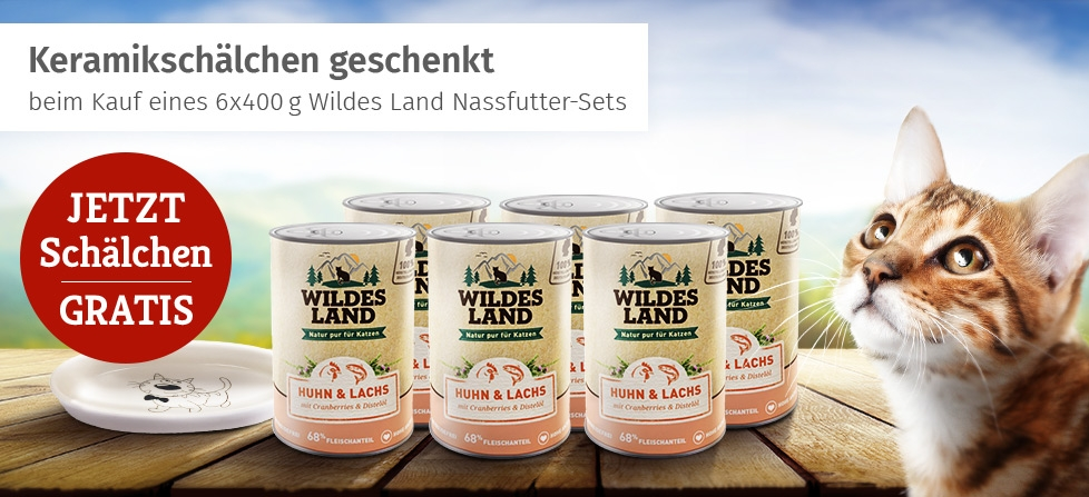 Wildes Land Nassfutter Aktion Katze - 6x400g Nassfutter-Set bestellen & Keramik Futterschale gratis erhalten