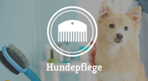Kategorie Hundepflege