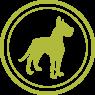 Royal Canin für große Hunde