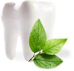100% natürliche Zahnpflege