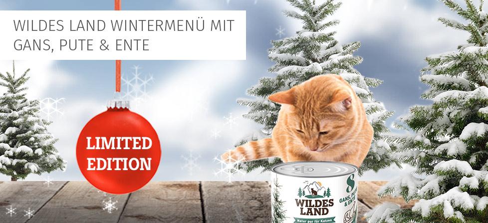 Wildes Land Wintermenü Katze